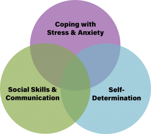 Venn diagram explaining goals of Palo Alto Autism therapy and social skills classes for Autistic adults and teens. The three circles include: Social Skills and Communication. Coping with Stress and anxiety. Self Advocacy | Group therapy for autistic adults | Working professionals group | Open Doors Therapy 94306