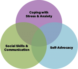 Venn diagram explaining goals of Palo Alto Autism therapy and online group therapy for autistic adults in California. Autism resources in Palo Alto, CA are here too!